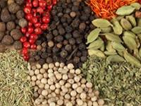kruiden-specerijen
